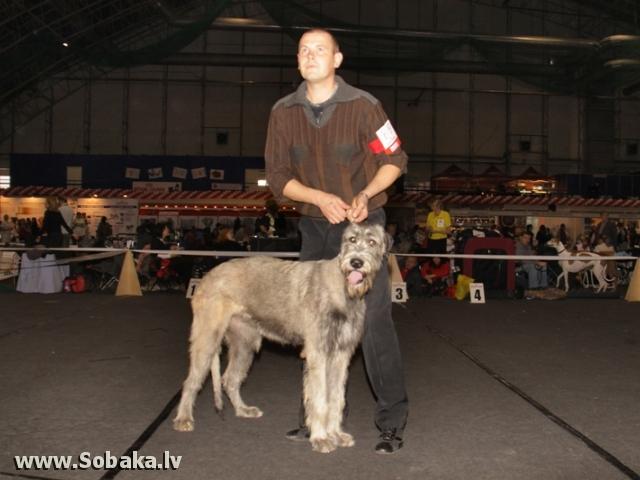 Vejgari Kasandra 31.10.2010 - Best bitch-puppy Kennel VEJGARI