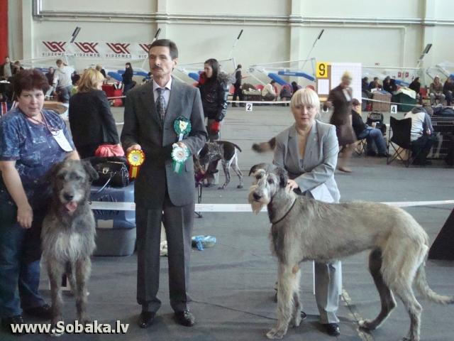 Vejgari Kasandra 19.02.2011. National dog show in Valmiera, Latvia. Judge Sergii Slukin, Ukraine.LV J CAC, BOO.  Kennel VEJGARI