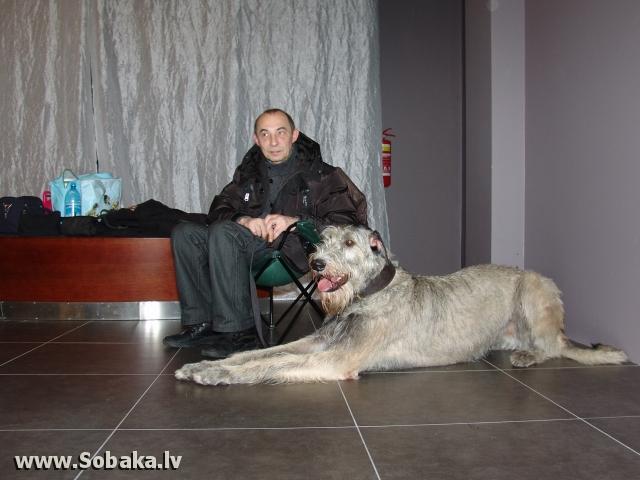 Вейгари Касандра  Питомник ВЕЙГАРИ