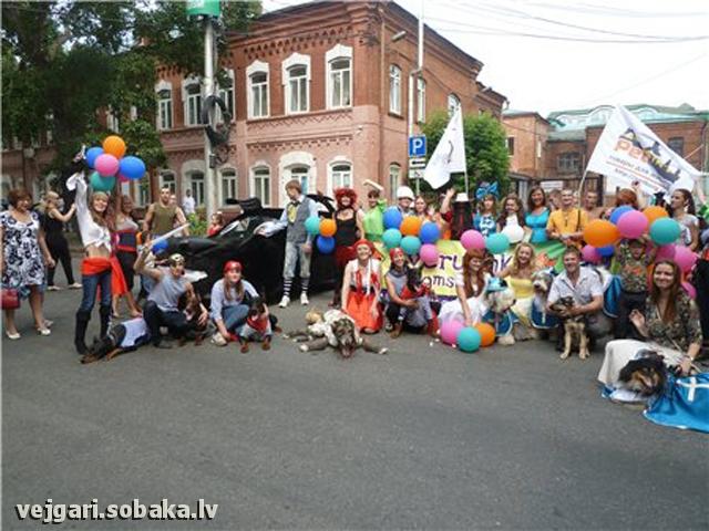 Vejgari Jasmin AT Volshebniy Les 30.06.2012 Kennel VEJGARI