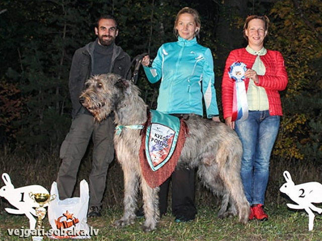 Don Du Rua Idalgo