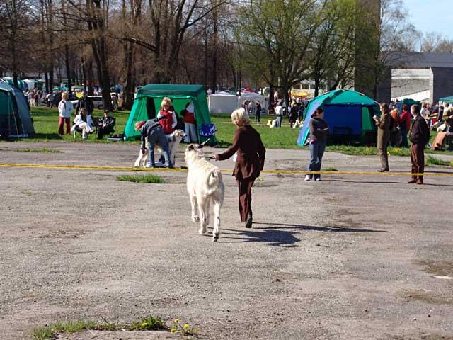 Поездка в Таллин (14/15 мая 2005 год)  Питомник ВЕЙГАРИ
