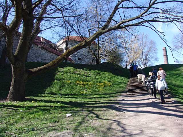 Tallinn (14/15.05.2005)  Kennel VEJGARI