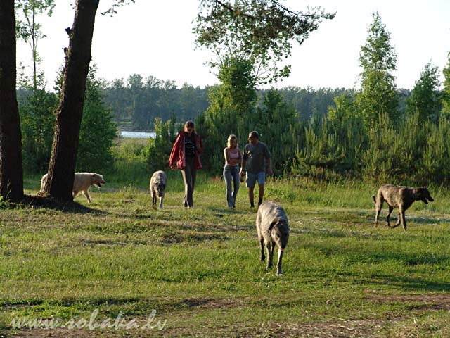 Vejgari - 8 years   (17.06.2005)