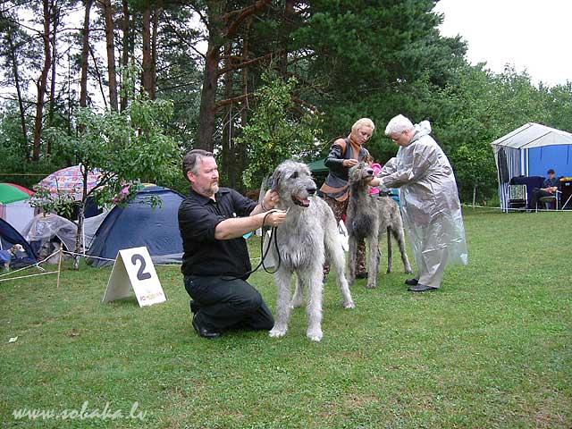Irish wolfhounds Bokra Scirocco, Finland & Freija Vejgari Spec. Show. Trakai. 06.08.2005 Kennel VEJGARI