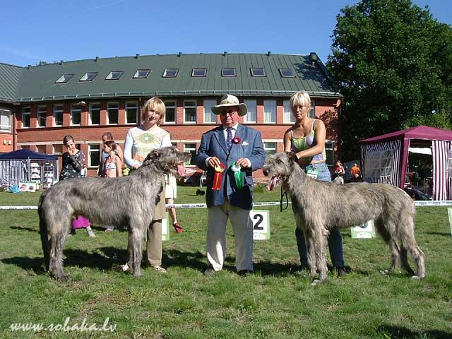 Irish wolfhounds Выставка в Марупе (Латвия). 20.08.2005 Kennel VEJGARI